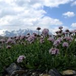 Trekking, hiking and exploring the Italian Alps 2