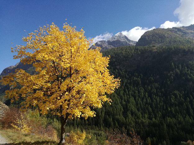 Trekking Alps Autumn Hikes
