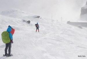 Wild Winter Snowshoeing