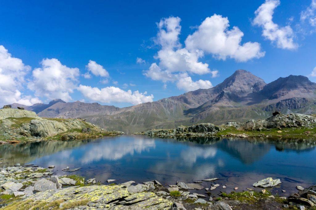 Gran Paradiso Easy Trek 47