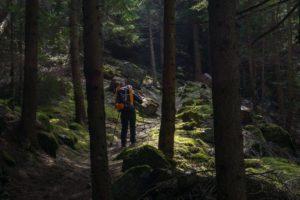 Trekking: an Idea for Stop Smoking 9