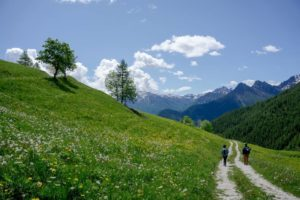 Hiking in Spring - One if the best period for the Alps! 1