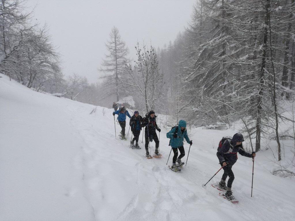Heavy snow Day Trek from Torino