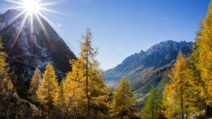 Trekking tours in the Italian Alps