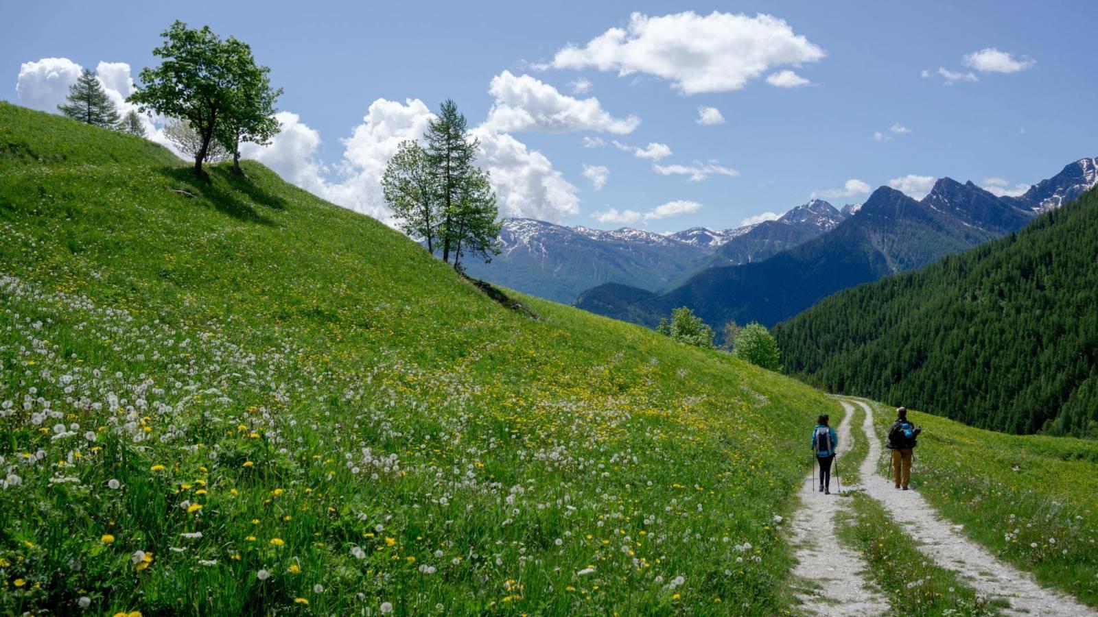 trekking_alps_header