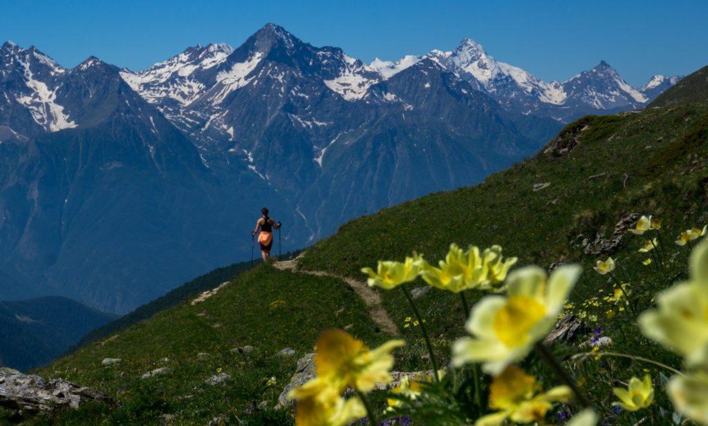 trekking alps tours