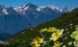 trekking alps