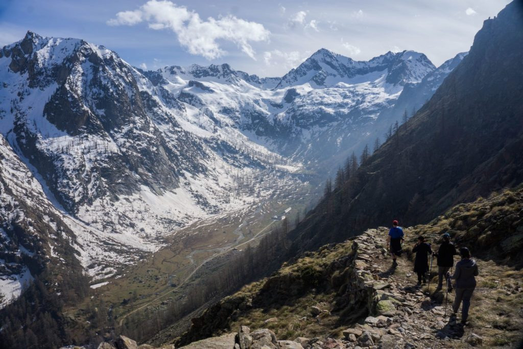 Trekking Alps and COVID-19: Update