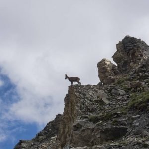 Inn to Inn Matterhorn Cervino Matterhorn Trek-02172